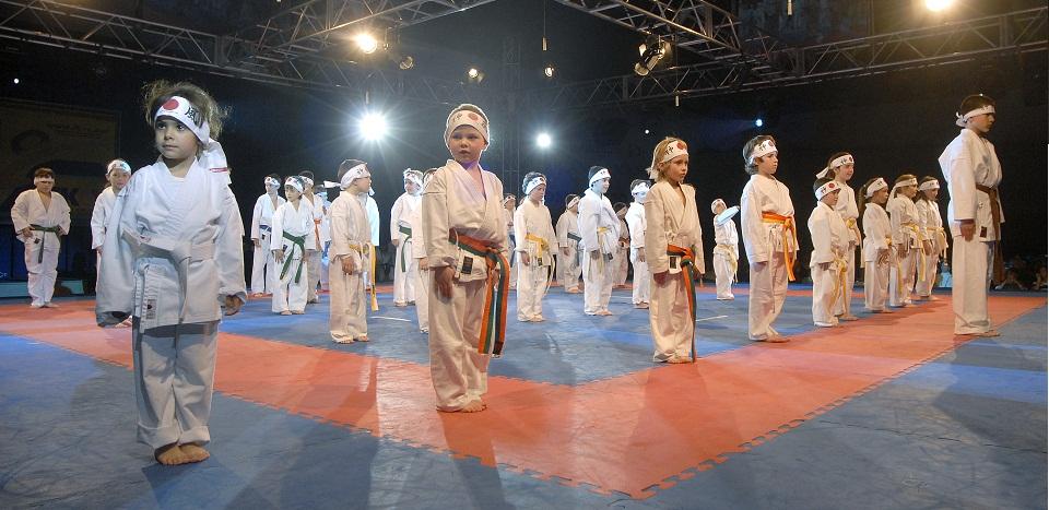 Breve historia del karate para niños