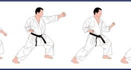 Dinámicas de trabajo desde la óptica del kata: heian shodan hen te