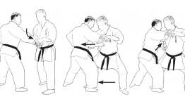 Estudio del bunkai de los katas