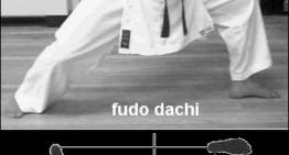 Desarrollo de Fudo-dachi y sus variantes