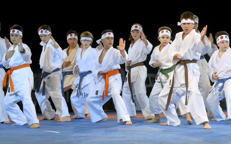 Aprende Karate